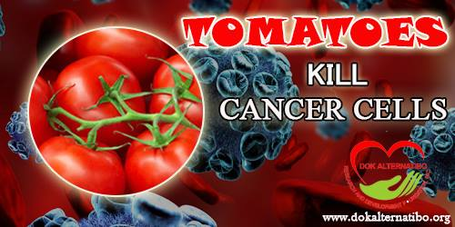 The Wonder of Tomatoes in Killing Cancer Cells